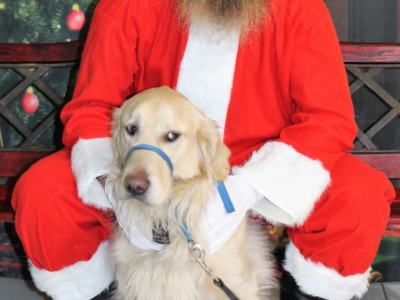 Crazy Cat Dog Grooming & Canine Academy 2018-12-16 – Santa Paws