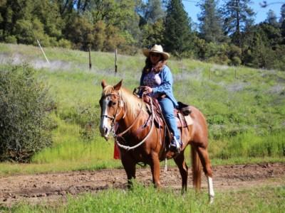 CSHA 04-30-17 Westside Trail Trials Day 2