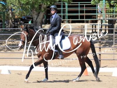 Broken Bit Ranch Diversified Dressage – 07-27-19
