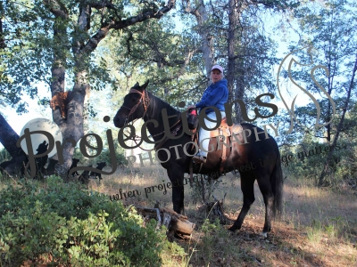 CSHA 06-12-21 Tillicum Meadows