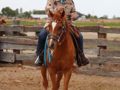 Fallon Trail Trial